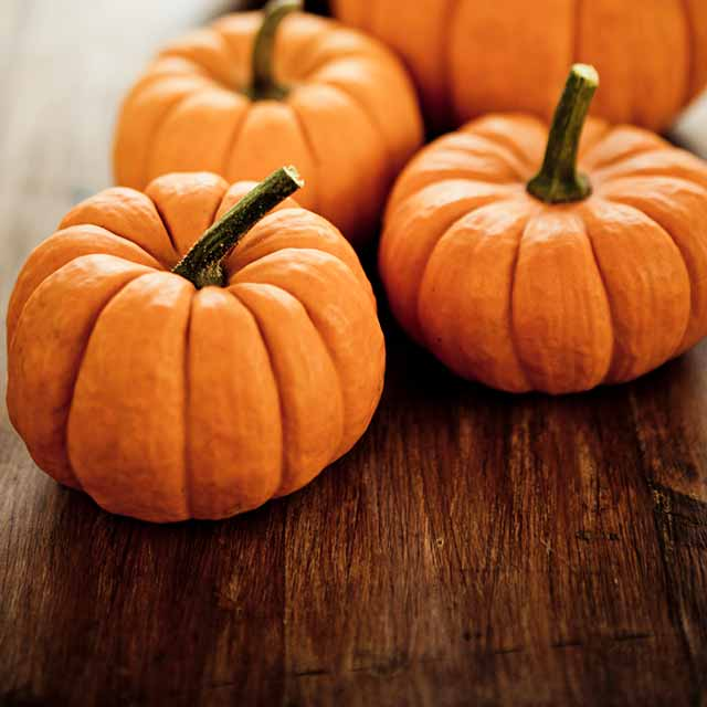 ' Benefits of pumpkin ' ' Health benefits of pumpkin '