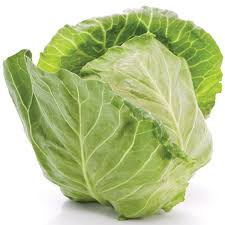 ' benefits of cabbage ' ' health benefits of cabage '