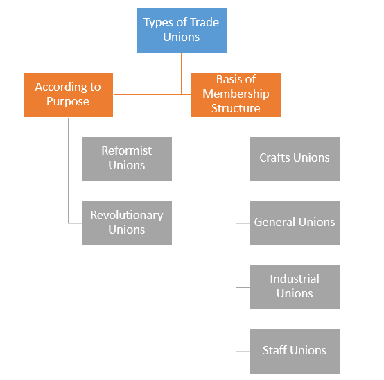 ' Types of Trade Unions ' ' Types of Trade Union '