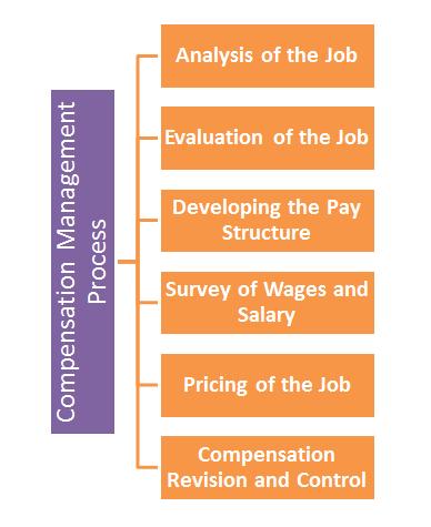 ' Compensation Management Process ' ' Process of Compensation Management '